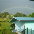 Rainbow in the Backyard