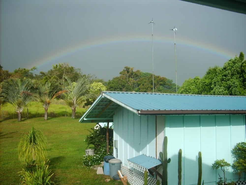 Rainbow in the Backyard