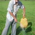 DH and the Jack Fruit